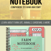 Book with farm animals