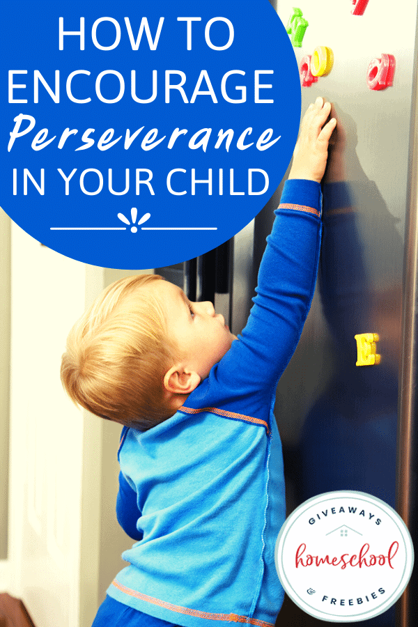 How to Encourage Perseverance in Your Child. #perseveranceinkids #encourageperseverance #homeschoolgiveaways