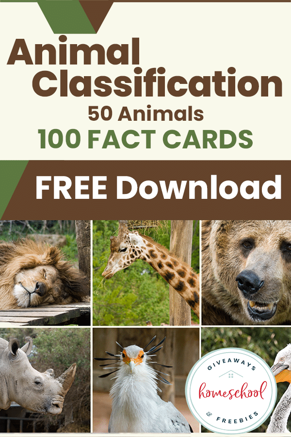 Free Animal Classification Homeschool Curriculum