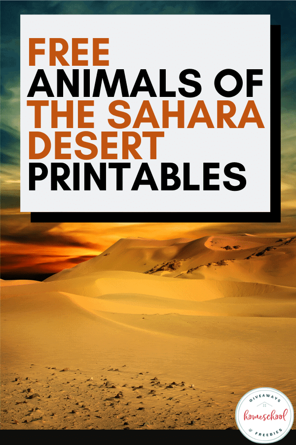 Free Sahara Desert Animals Homeschool Curriculum