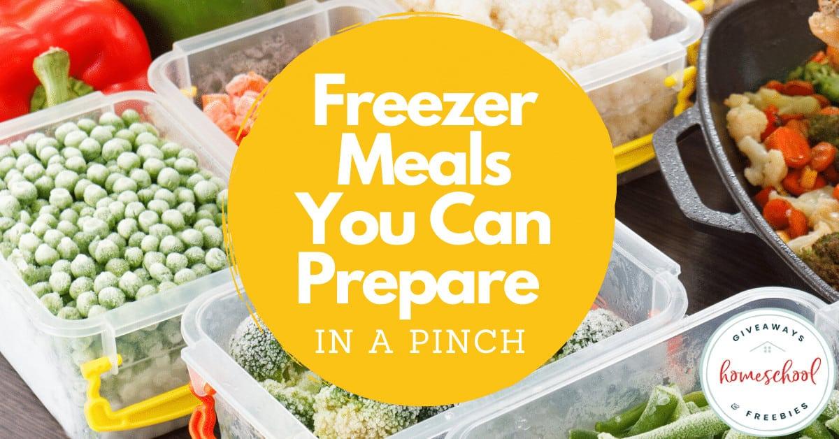 Freezer Meals You Can Prepare in a Pinch #easyfreezermeals #fastfreezermeals #preparemealsinapinch #homeschoolgiveaways