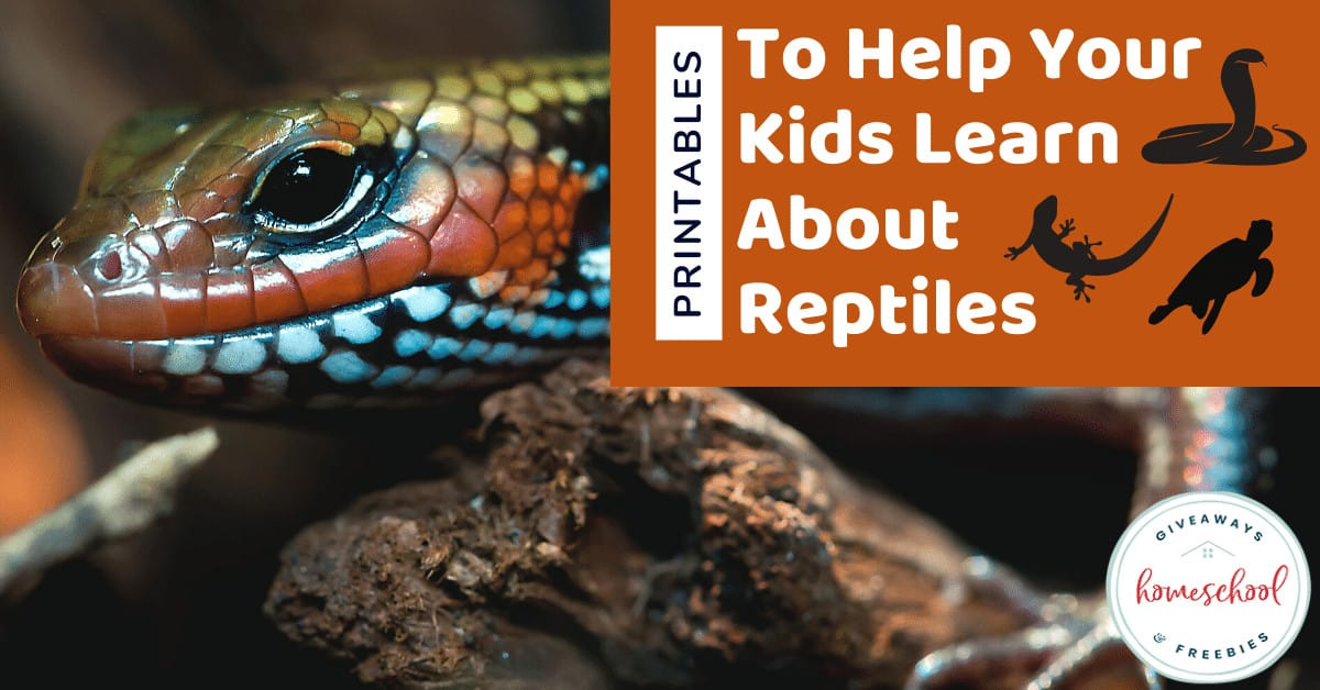 Printables to Help Your Kids Learn About Reptiles. #learningreptiles #learnaboutreptiles #reptileprintables