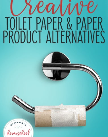 empty toilet paper roll with overlay Creative Toilet Paper & Paper Product Alternatives