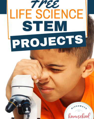 FREE Life Science STEM Projects. #cellularlife #animallife #humanlife #plantlife #lifescience
