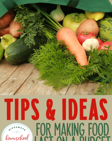 dumped grocery bag with overlay - Tips & Ideas for Making Food Last on a Budget