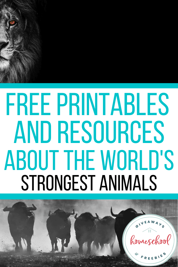 Free Printables and Resources About the World's Strongest Animals. #stronganimalresources #stronganimalprintables #worldsstrongestanimals