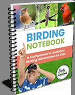birdingnotebook-3d