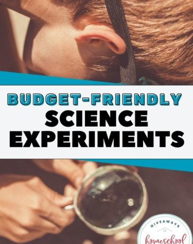 Budget-Friendly Science Experiments. #budgetfriendlyscienceexperiments #scienceexperiments #budgetfriendlyexperiments