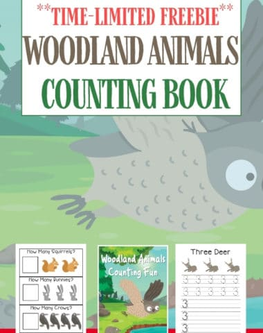 Woodland Animals Counting Book text overlay on image of a flying owl