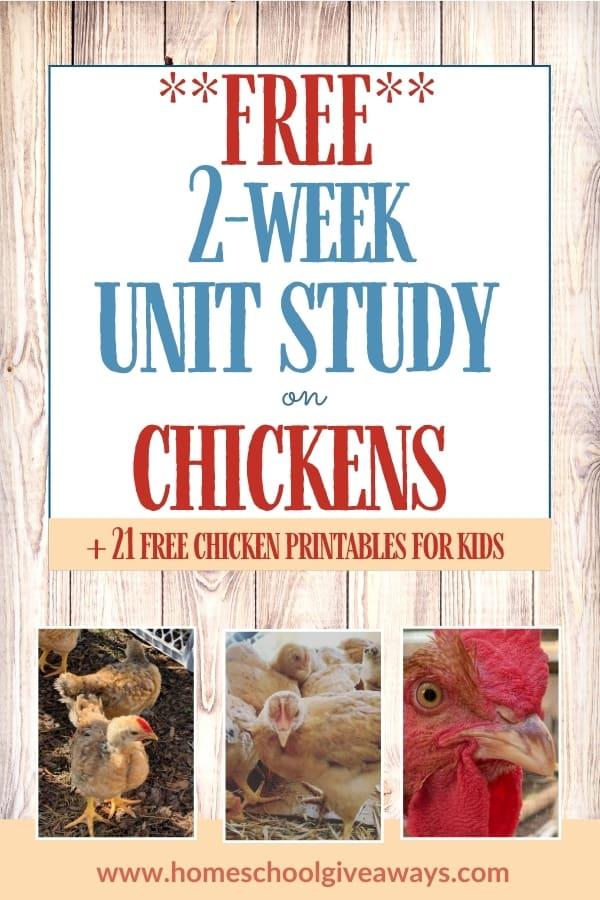 Free 2-Week Chicken Unit Study