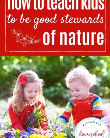 How to Teach Kids to Be Good Stewards of Nature. #homeschoolgiveaways #goodstewardsofnature #naturestewardship #earthstewardship