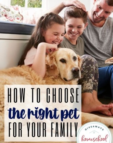 How to Choose the Right Pet for Your Family. #homeschoolgiveaways #petforyourfamily #familypet #choosingapet #familybestpet